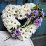 serce pogrzeb