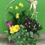 Kwiaciarnia Grasz w zielone?